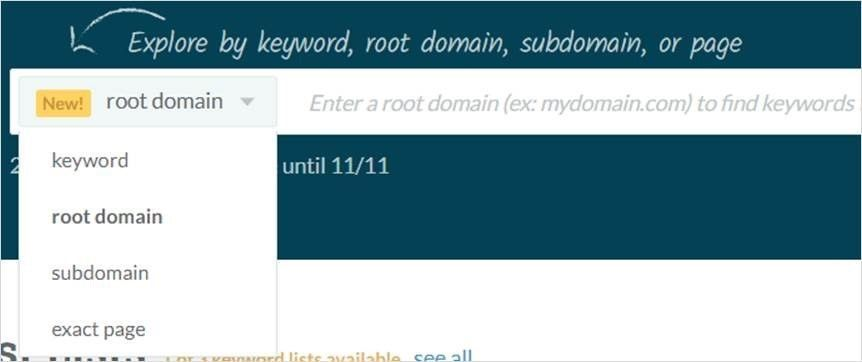 Búsquedas por KW, dominio, subdominio o URL