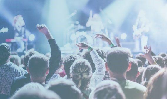 Audiencias en Search